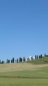 classique de la Toscane...difficile de résister!